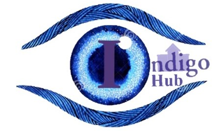 Indigo Hub